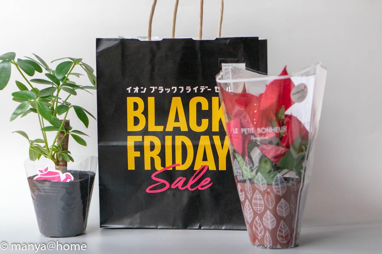 イオンブラックフライデー2019 ハッピーバッグ 観葉植物